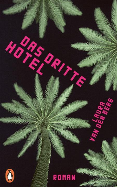 Laura van den Berg: Das dritte Hotel